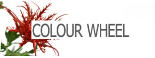MINIBANNERS_COLOURWHEEL