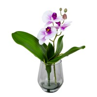 30CM MINI ORCHID IN GLASS