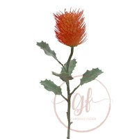 64CM ORANGE BANKSIA
