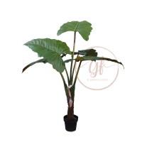 110CM RAINBOW PLANT W/5LVS