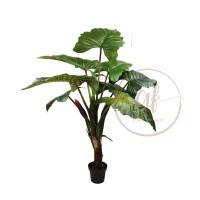 140CM RAINBOW PLANT W/9LVS