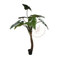 180CM RAINBOW PLANT W/8LVS